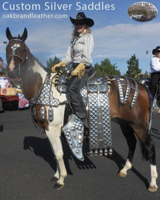 silver_saddle1-e1476043065984