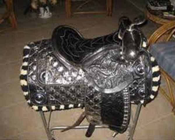 silver_saddle2-e1476043021509